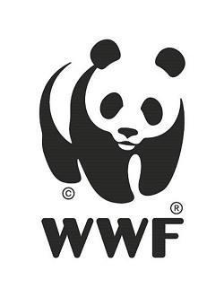 Wnf logo